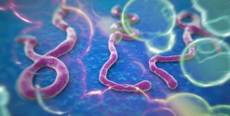 República Democrática del Congo enfrenta décimo brote de ébola. Foto:Archivo.