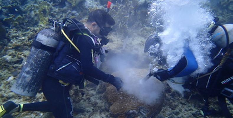 El ICIMAR surgió tras la integración del Centro de Bioproductos Marinos (CEBIMAR) y del Instituto de Oceanología (IdO). Foto: Archivo