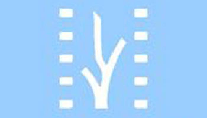 New Latin American Film Festival