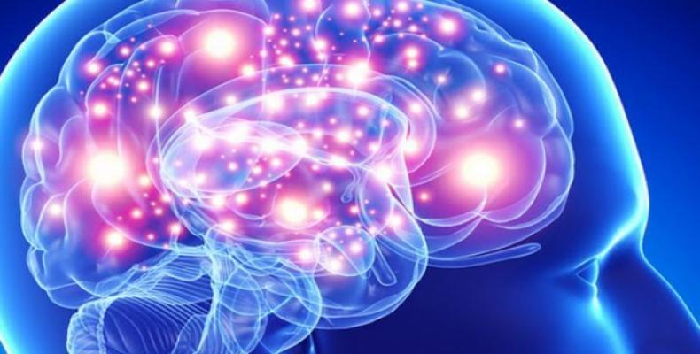 Científicos estadounidenses logran nuevo mecanismo para mejorar la memoria a corto plazo.Imágen:Internet.