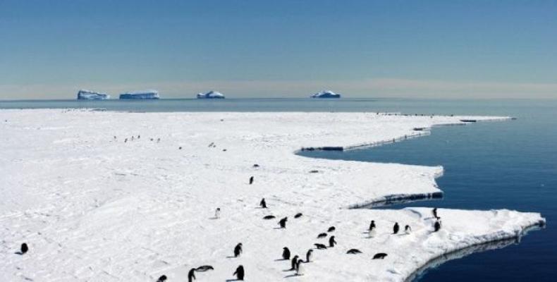 Climate change affects Antarctica glaciers.  Photo: Google File