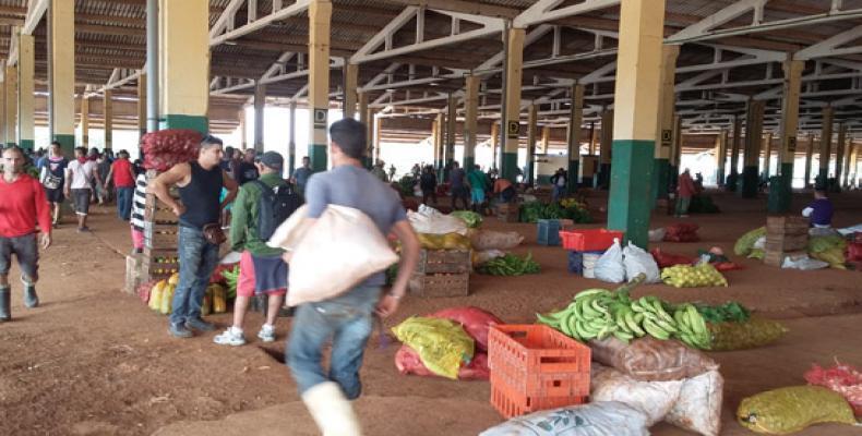 Mercado mayorista El Trigal
