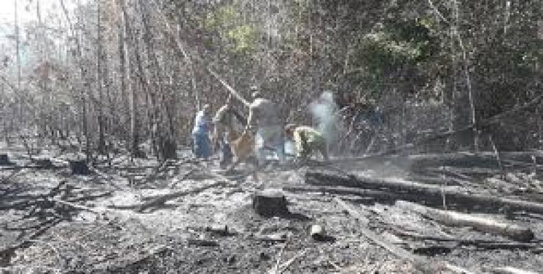 El incendio se produjo en la empresa agroforestal Macurije, del municipio de Guane. Foto: Daimí Díaz Breijo
