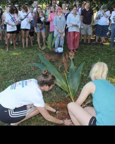 Brigadistas solidarios plantar árbol en el  Campamento Internacional Julio Antonio Mella, de Artemisa.(Foto:Lorenzo Oquendo)