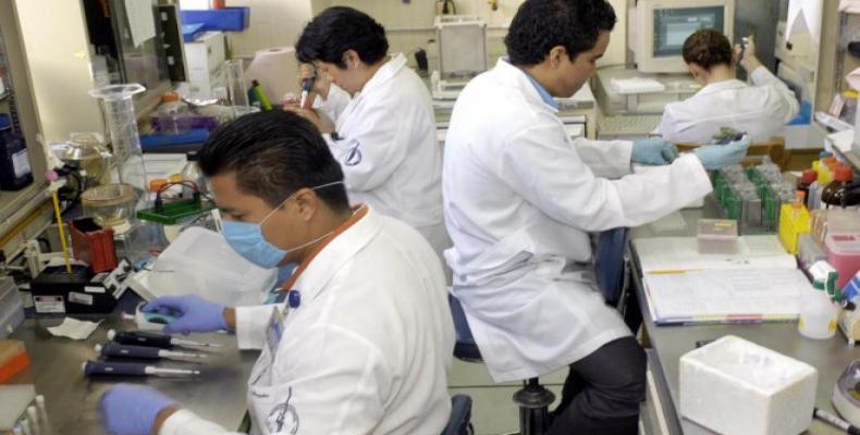 Científicos japoneses consiguen recuperar funciones cardíacas con células iPS (internet)