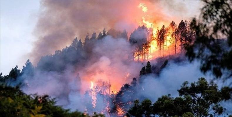 Una imagen del fuego que afecta el municipio Valleseco de Gran Canaria. Foto: antena 3.