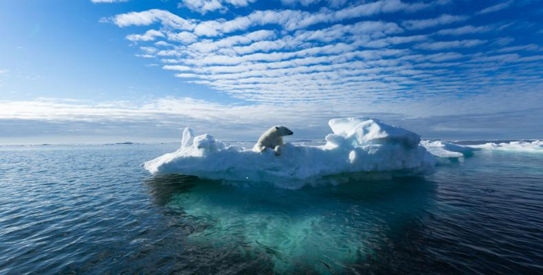 Climate study finds ocean temperatures hit record high in 2018.  Photo: Reuters