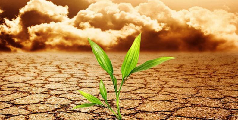 O Painel Intergovernamental de Mudança Climática conclui nesta sexta-feira no Equador.