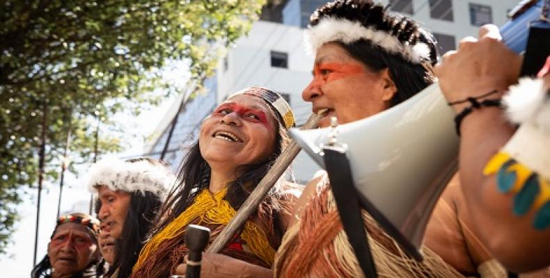 Ceibo has been accompanying significant legal victories against extractivist companies. (Photo: Alianza Ceibo (Facebook)